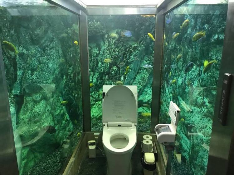 bagni strani acquario